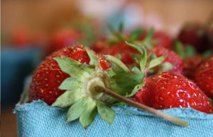 Indianapolis Strawberries