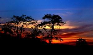 assam-sunset