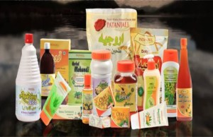 Patanjali Ayurved successfully bids for food park in Mihan