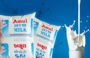 Amul to sell camel milk by March 2017