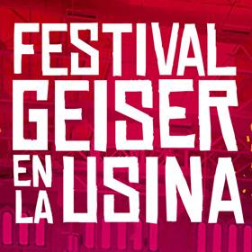 Festival de Invierno de Geiser 2015