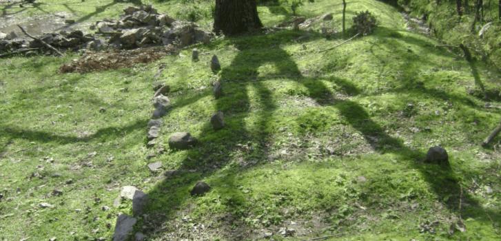 Fosse comuni in Kashmir, dalla Rivista il Mulino