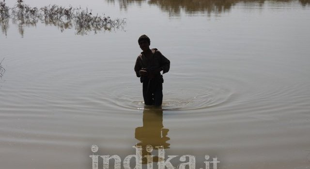 Reportage fotografico dalle zone alluvionate del Sindh pakistano.