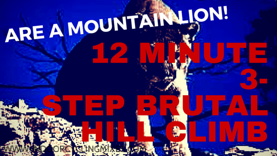 Are you a mountain lion?