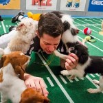 Super Bowl...con cuccioli!