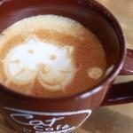 Gatti e Caffe': Accoppiata Geniale a New York
