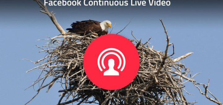 Facebook enables Continuous Live Video to power puppycams and more