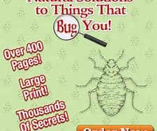 things that bug you book
