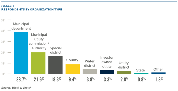 2013 Strategic Directions in the U.S. Water Industry