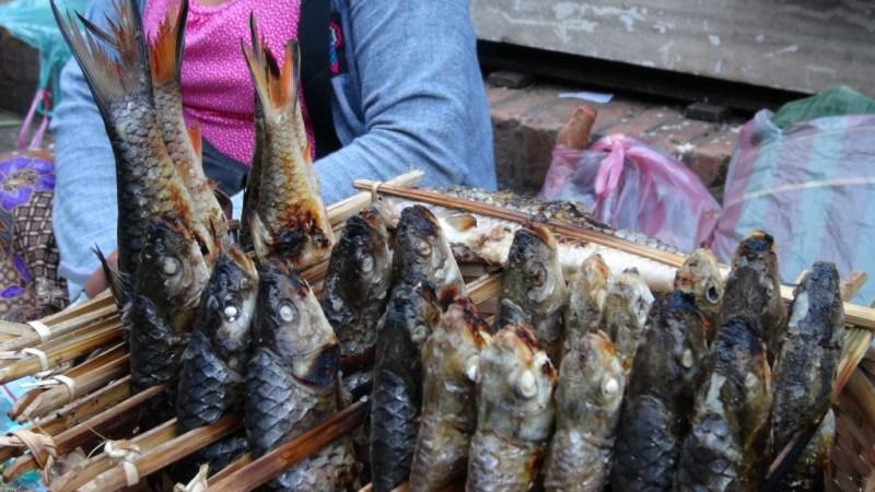 Fisk til morgenmad - Arrhhh