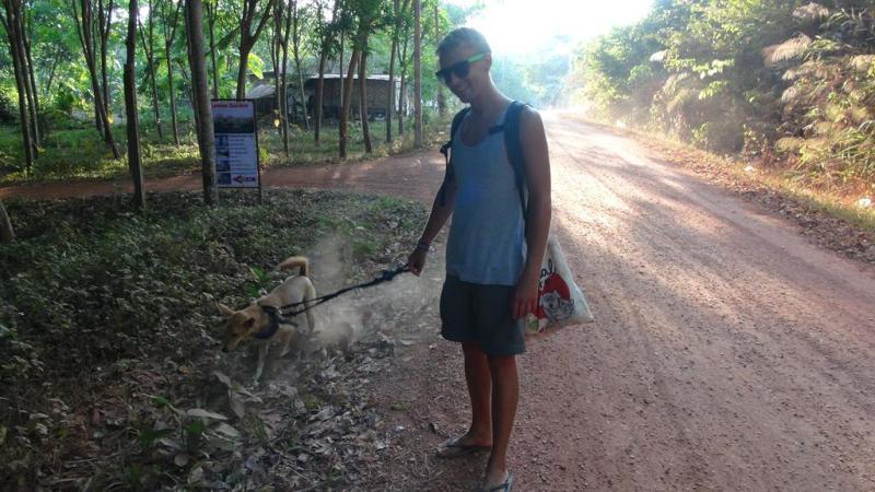 Thailand, koh lanta, hund