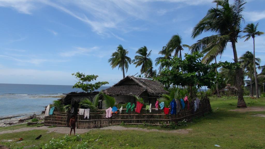 Donsol's hvalhajer & Tyfonen Yolanda
