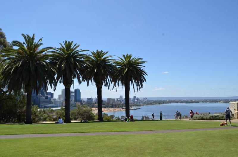 Kings park, Perth.
