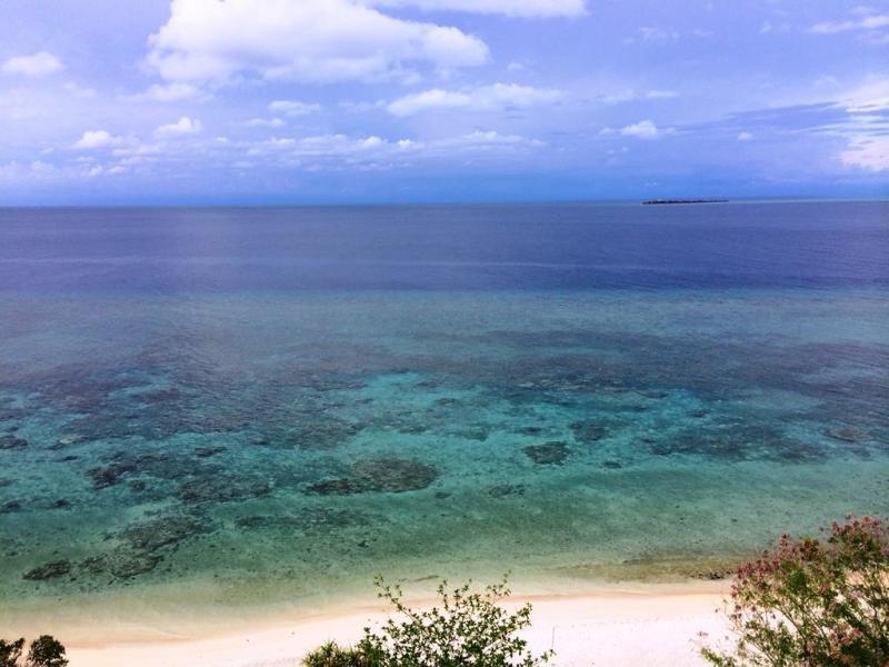 Vi besøgte en lille ø om aftenen - Apo island. Her udsigten fra det lille fyrtårn på øen.