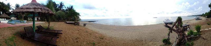 Stranden på Apo Reef club