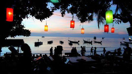thailand, palme, kokosnød, strand, koh tao