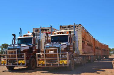 Australien, outback, roadtrains