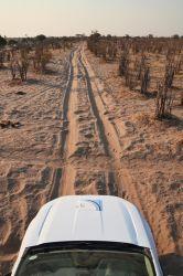 7. Makgadikgadi Pans National Park (54)