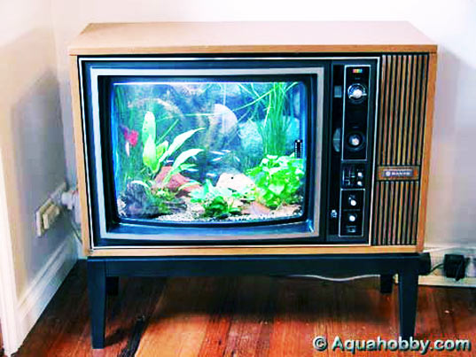 analog tv is dead, digital switchover, television, what to do with