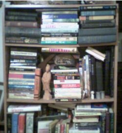 (Some Of) My Sagging Bookshelves