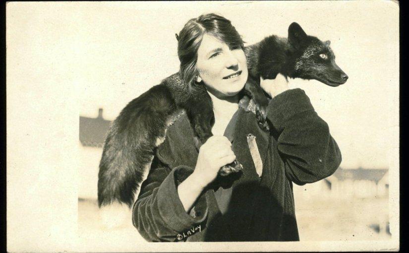 Foxy Vintage Postcard Stories