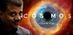 cosmos-vitrine-emmy
