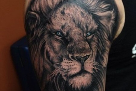 lion tattoo designs for boys and girls6 ?x79615