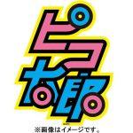 ピコ太郎が広告収入で2500万円以上を稼げる理由とは?PPAP動画はネットビジネスの基本