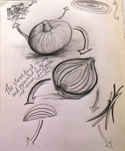 sliced, diced & separated red onion sketch, Sara Kapadia 7-