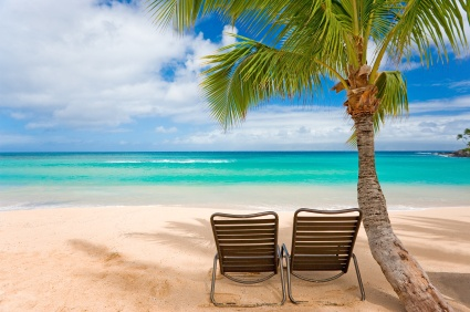 tropical beach with palm tree and two chairs