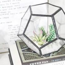 diy-geometric-terrarium-16