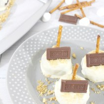 smores-brownie-pops-3