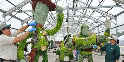 toy-story-topiaries