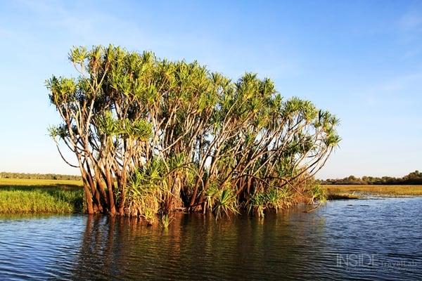 Kakadu Park Waterway