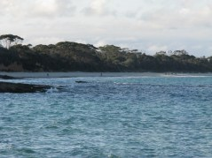 19 - Looking Back to Nelsons Beach from Blenheim Beach