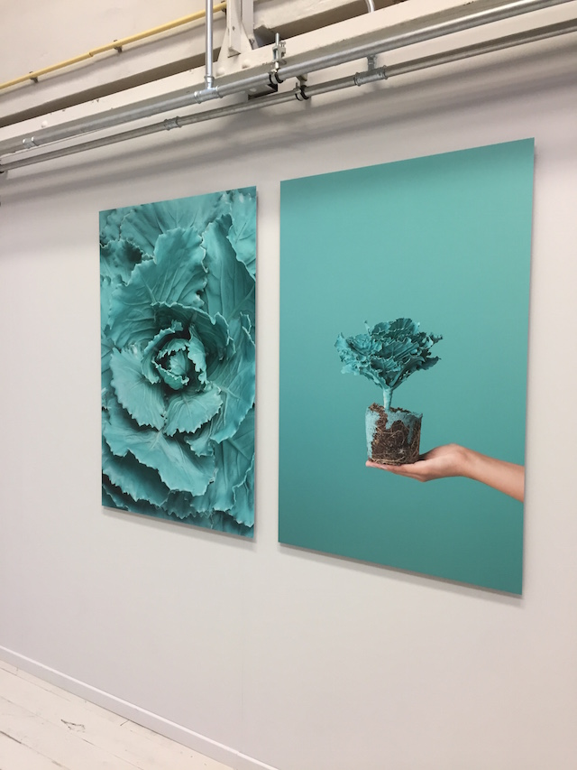 DDW16   Material and color   Willeke Machiels + Nadia ten Wolde