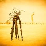 14-Burning-Man-2014-.jpg