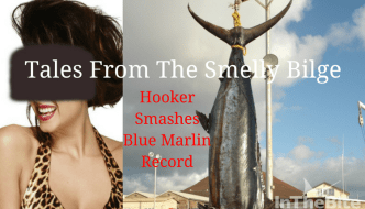 Tales from the Smelly Bilge– Hooker Smashes Blue Marlin World Record