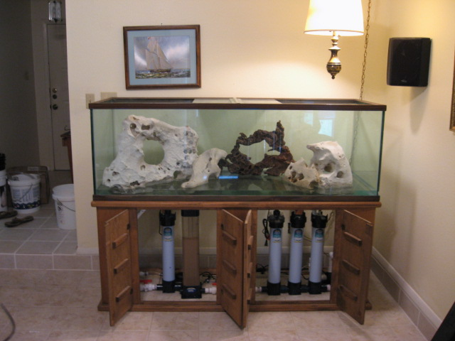 Saltwater aquarium set up and marine skimmer,filtration design