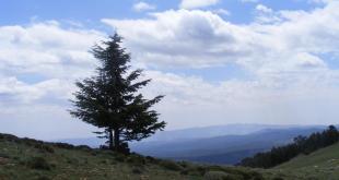 شِلْيَثْ (شيليا)، أوراس - Chelyeth (Chilia), Aures