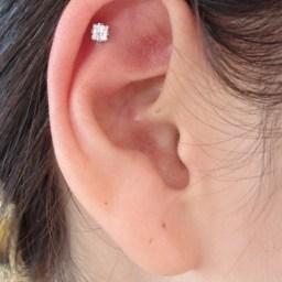 Cartilage Piercings Various INVSELF08