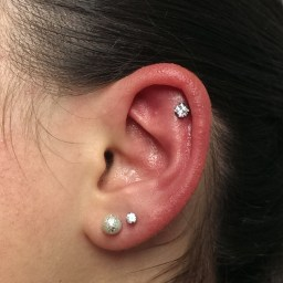 Cartilage Piercings Various INVSELF30