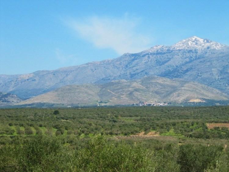 Καστέλλι. Η κατάφυτη πεδιάδα με τους ελαιώνες. Εδώ, ανάμεσα στα βουνά και σε 26 οικισμούς, σχεδιάζουν την εγκατάσταση αεροδρομίου.