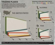 BR Race demographics