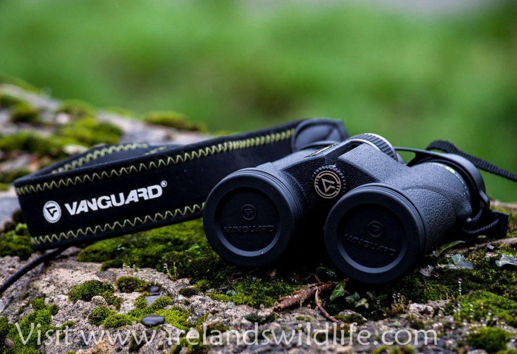 Vanguard Spirit ED 8x36 Binocular Review