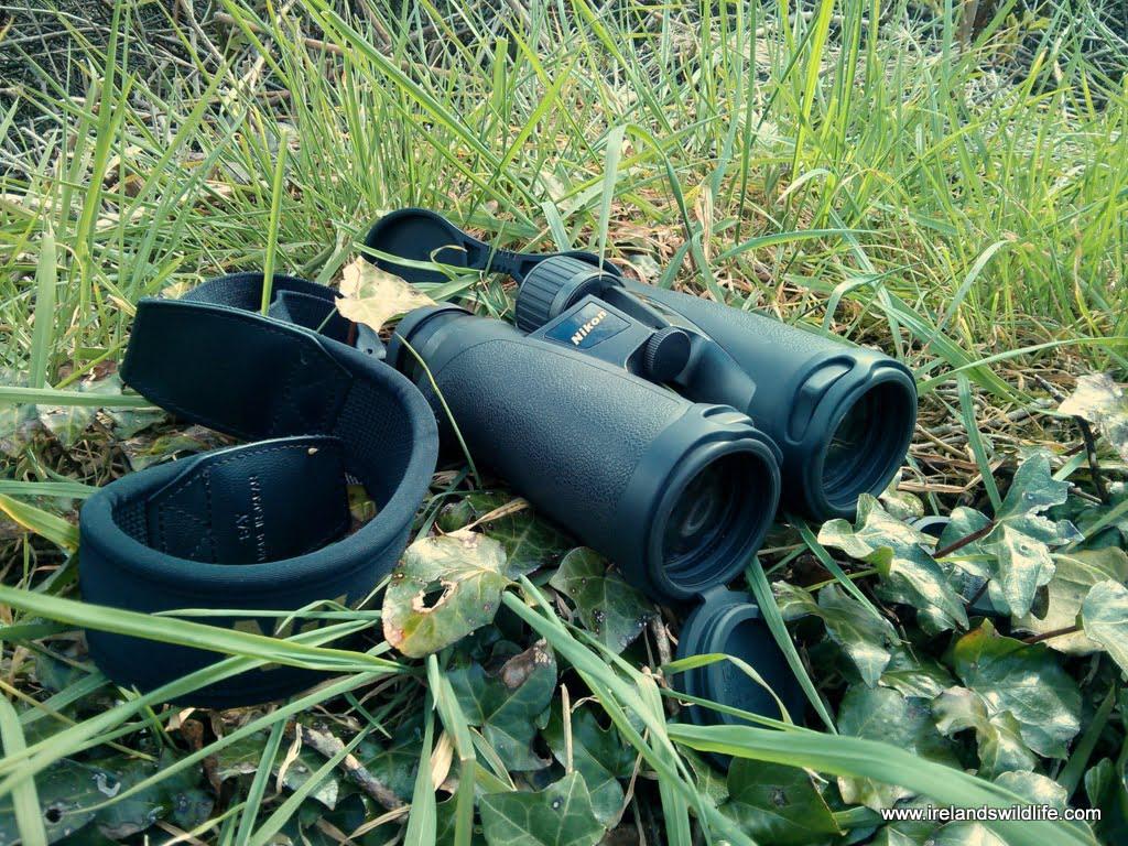 Nikon EDG 8x42 Binocular Review