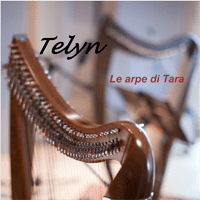cd-2013-le-arpe-di-tara-duo-telyn