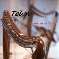 cd-2013-le-arpe-di-tara-duo-telyn