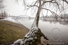 Winter 2015 - Impressionen aus Magdeburg