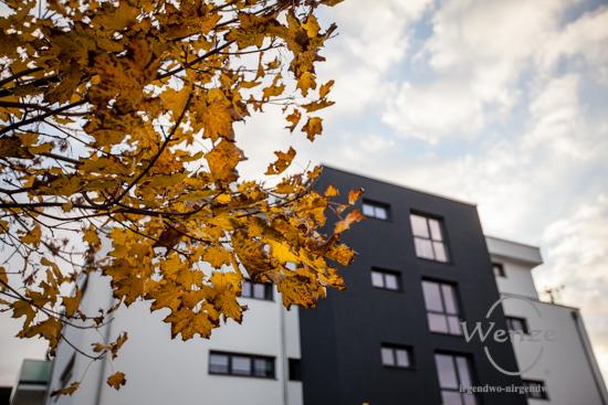 Magdeburg im Herbst - Elbbahnhof